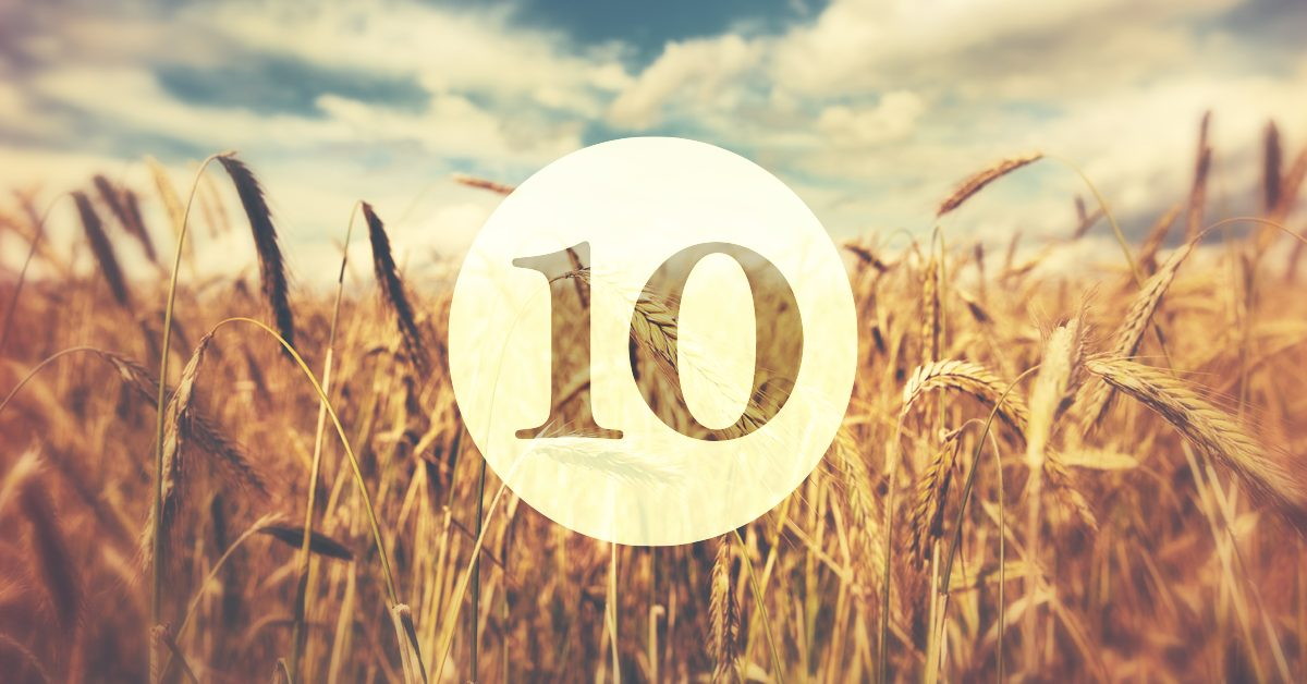 10 Biblical & Practical Ways to Get Involved in Church Planting Today
